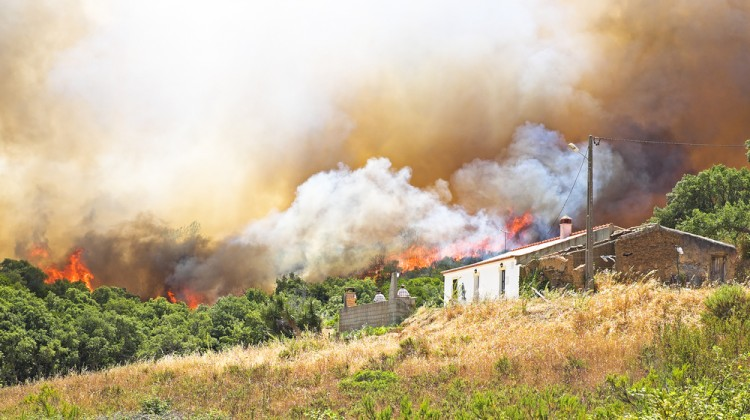 homeowners need fire insurance