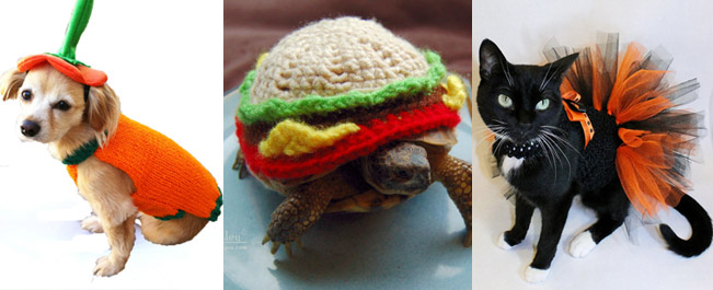 Best Halloween Pet Costumes