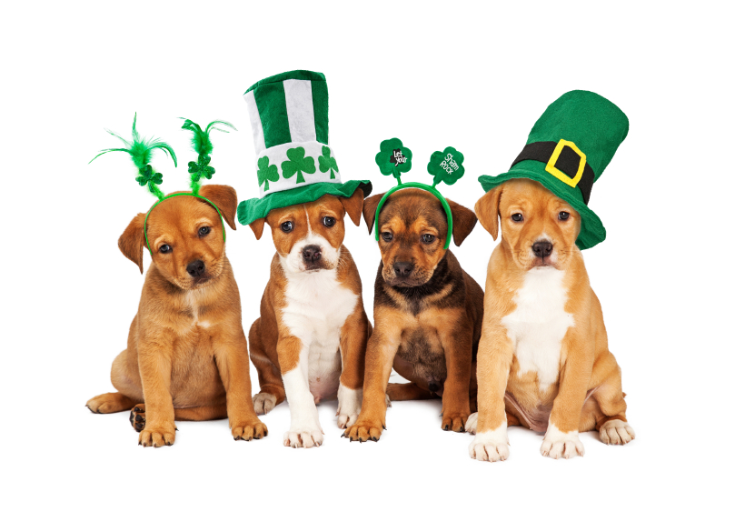 Top o' the Morning St. Patrick's Day Sales