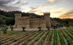Napa Valley Winery, Winery, Wine Tasting,