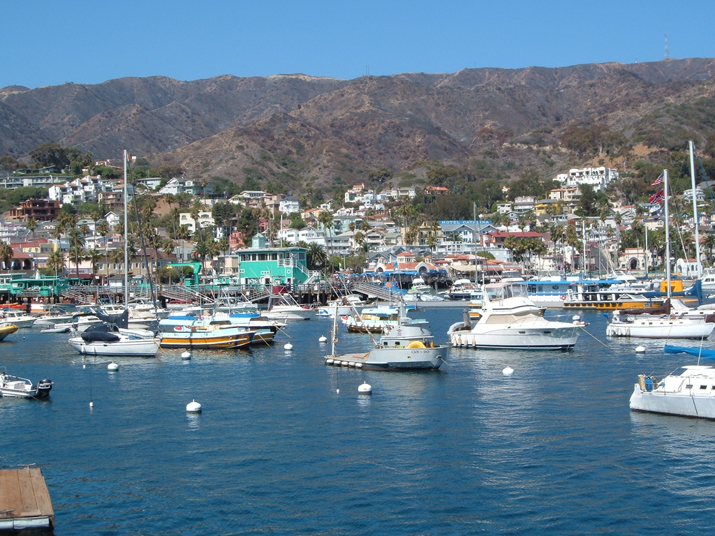 Download this Catalina Island Easy Boat Ride Paradise picture