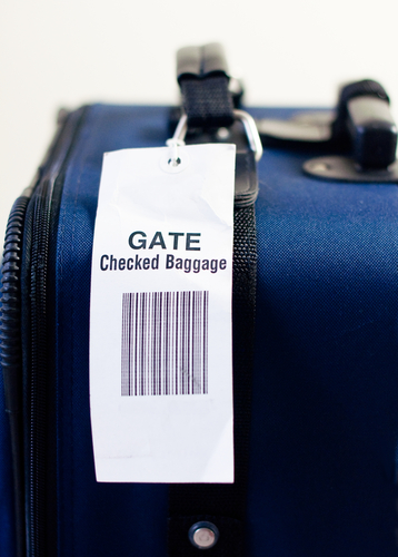 checked bag