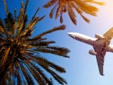0% APR Credit Card vs. Airline Miles Card: Which Is Best for Travel?