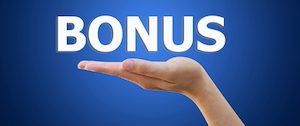 Which travel credit cards provide a points bonus or dividend?