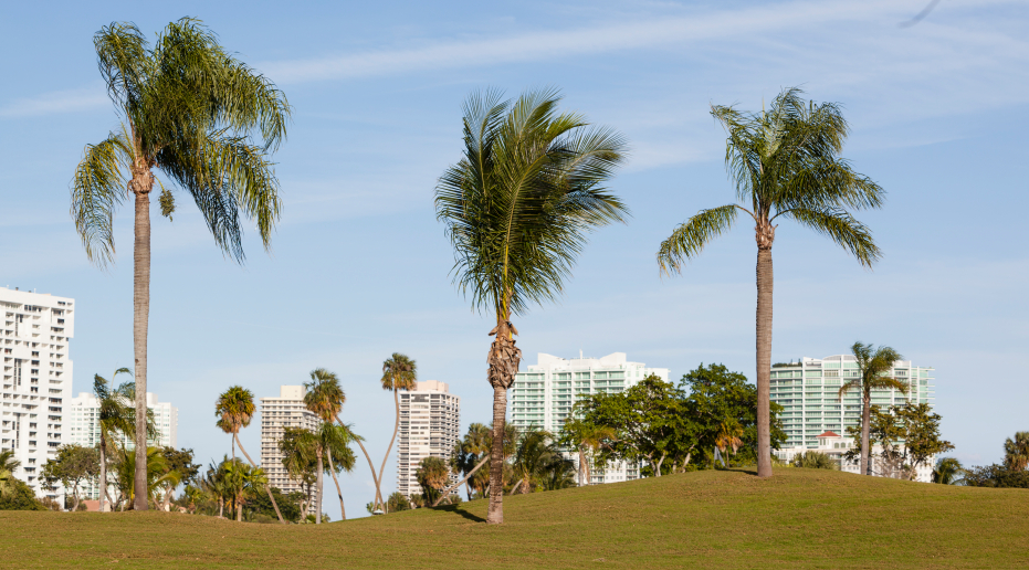Best cities to invest in florida for Best small towns to live in in florida