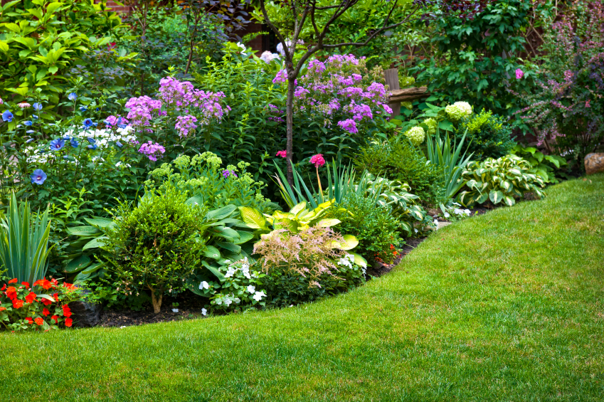 How to start a landscaping business nerdwallet - Ideas para hacer un jardin ...