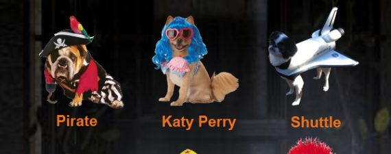 Top 10 Nerdy Halloween Costumes For Dogs