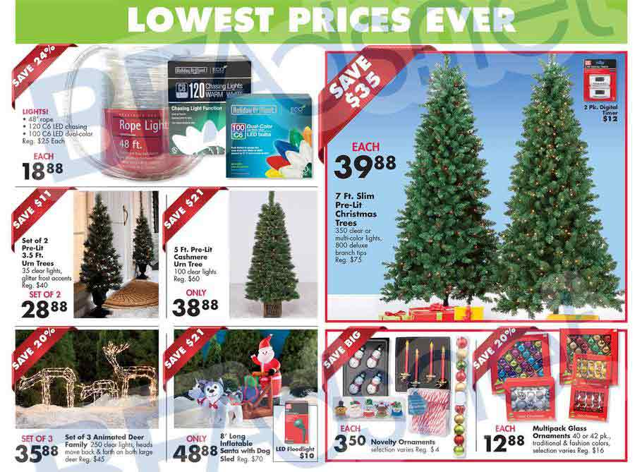 Big-Lots-Black-Friday-08