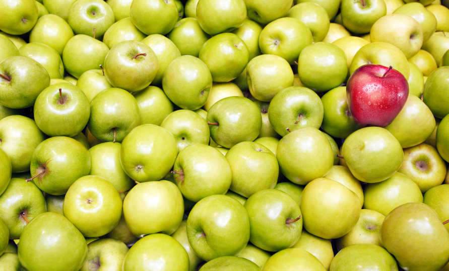 Apples to Apples: Comparing Auto Insurance the Right Way