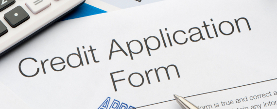 how to report income on credit card application