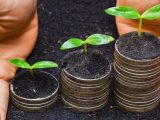 Long-Term Business Loans: Best Options for Growth