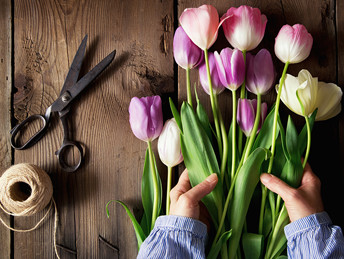 nw-smb-image-tulips@1x