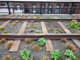 A nonprofit was behind High Line Park , former elevated freight railroad spur in New York