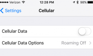 Cellular data on an iPhone