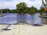 How Small-Business Owners Can Cope With Natural Disasters