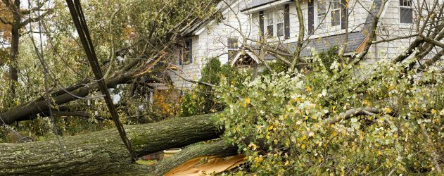 Disaster hit your home and mortgage: Who to call, what to do -story