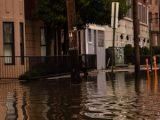 flood-insurance-limits