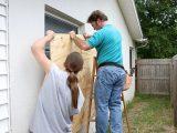 insurers get innovative in hurricane response