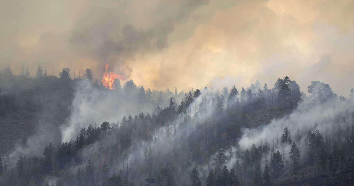 Get Ready for an Intense Wildfire Season in the Western U.S.